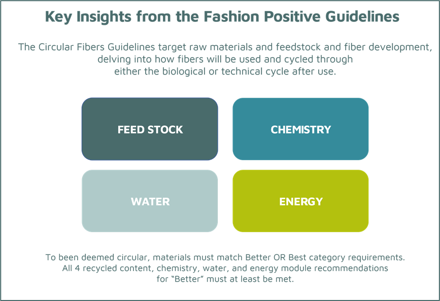 Insight from Fashion Positive Guidelines to mainstream circular fibers