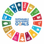 Making SDG Commitments Through Impact Mesurements